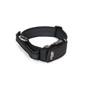 Dog Nylon Collars