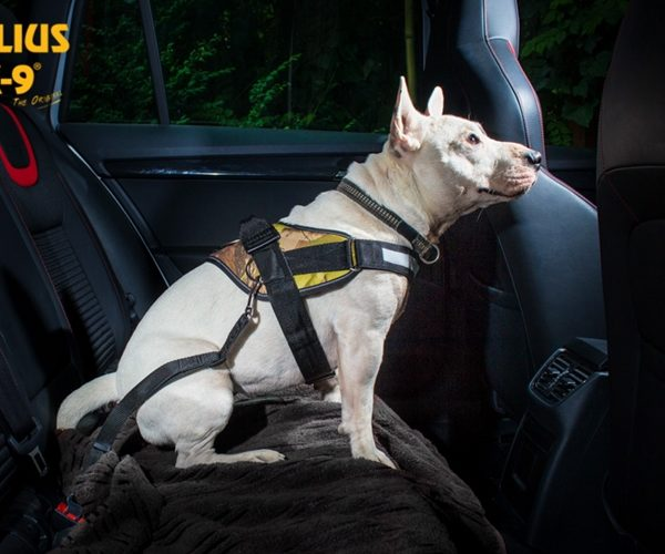 Seat belt adapter for dogs Black Size: 2 Julius-K9