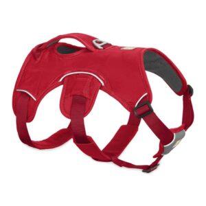Ruffwear-webmaster-dog-harness-redcurrant