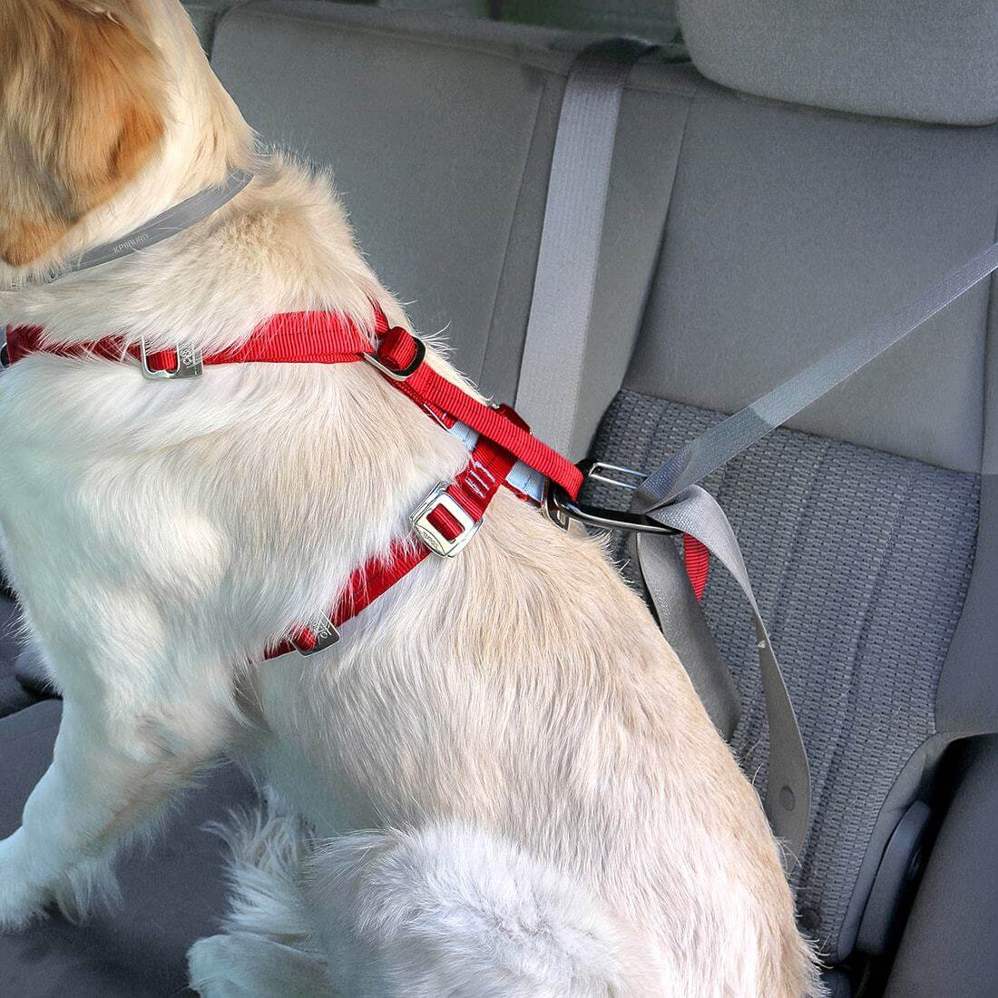 Kurgo Enhanced Tru-Fit Smart Dog Harness
